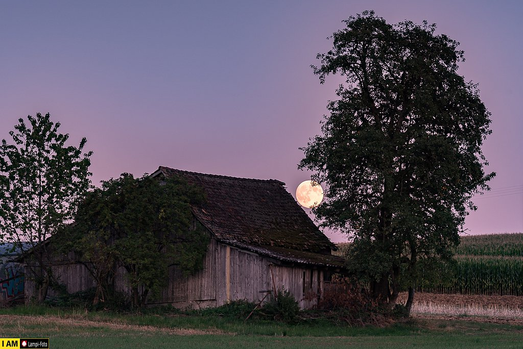 Lampenberg, Sormattsacheune