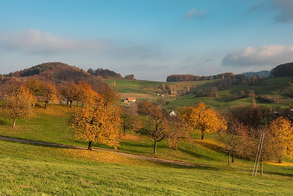 Arboldswil, Blick Richtung den Höfen Neueten und Baach