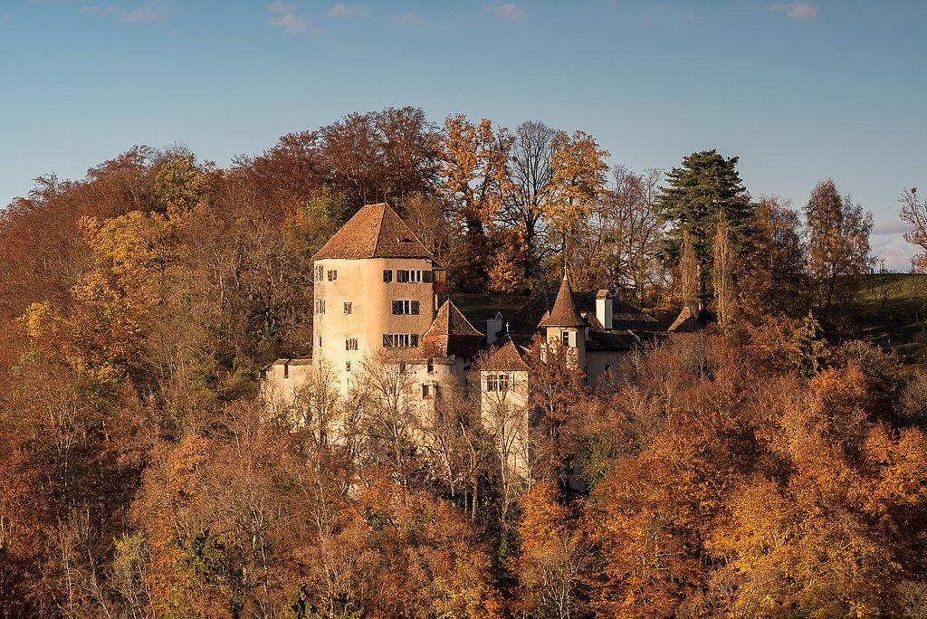 Bubendorf, Schloss Wildenstein