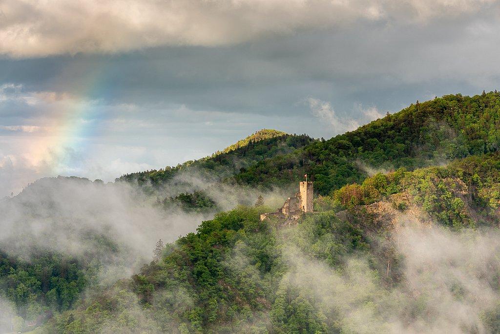 Waldenburg, Schloss