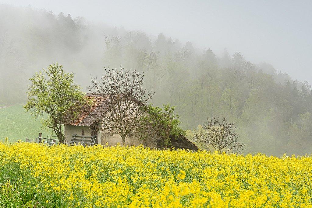 Lampenberg, Leimenweidscheune